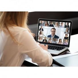 goWeb: Sala Virtual de reunión