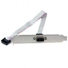 Piastra slot 16'' (40cm) da seriale maschio 9 pin a header scheda madre 10 pin