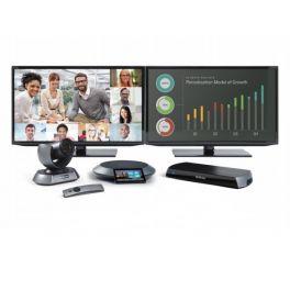 Lifesize Icon 600 - Phone HD Dual Display